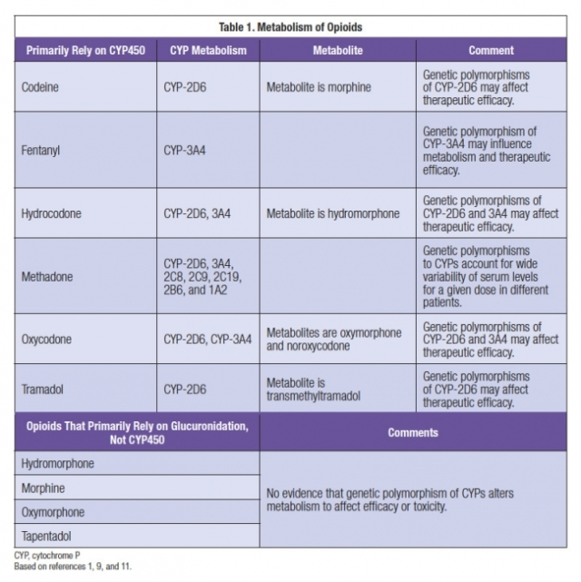opioid metabolism