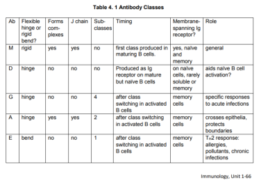 +++ 4.1 Antibody types and functions table
