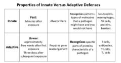 +++ inate v adapt imune qkref